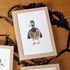 Fancy Animals Print, Mallard Duck - Art - 2