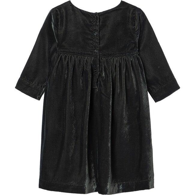 Velvet Embroidered Dress, Green
