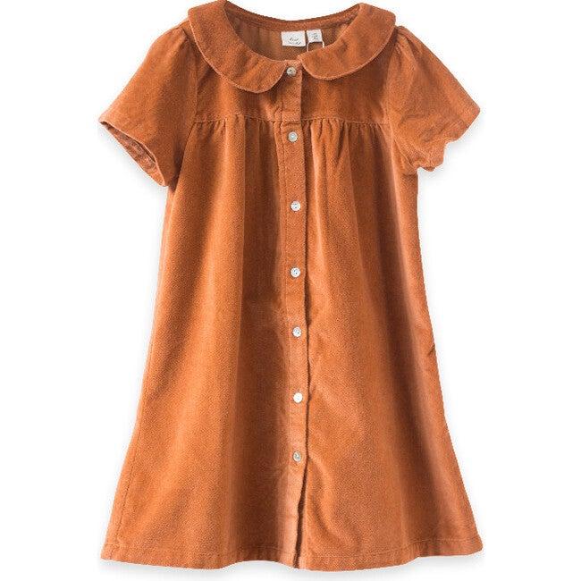 Fae Dress, Rust Velvet
