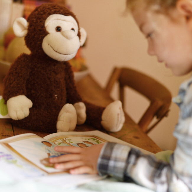 Boodles Plush Toy & Being Adopted is Special Book