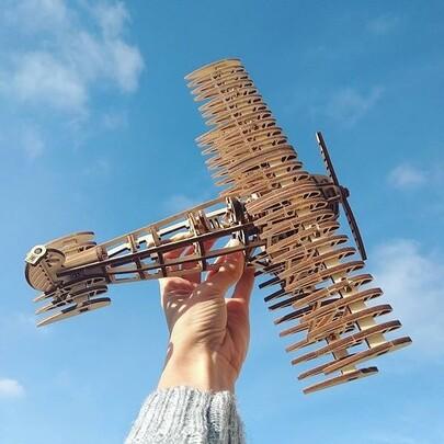 USA Woodtrick  STEM Toys